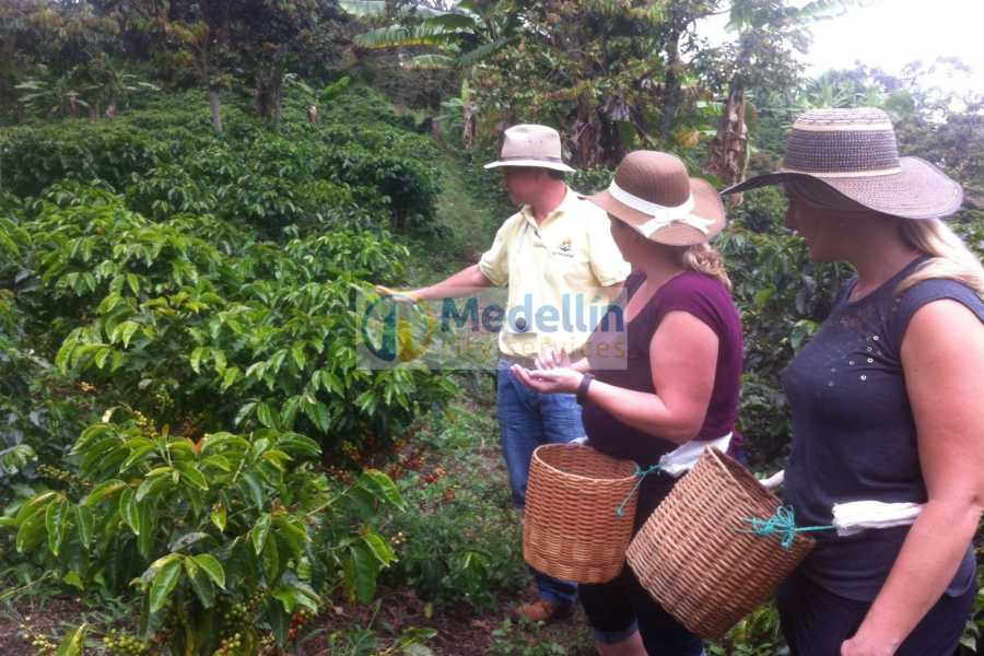 Medellin City Tours Private Jerico Full Day Coffee/Mother Laura Tour