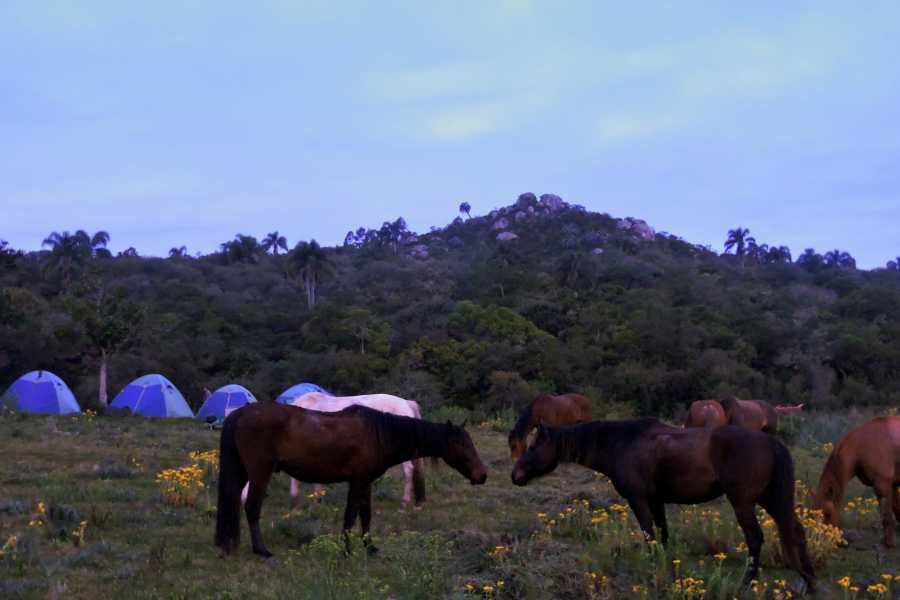 Cabalgatas Valiceras Cabalgata al Cerro de los Rocha