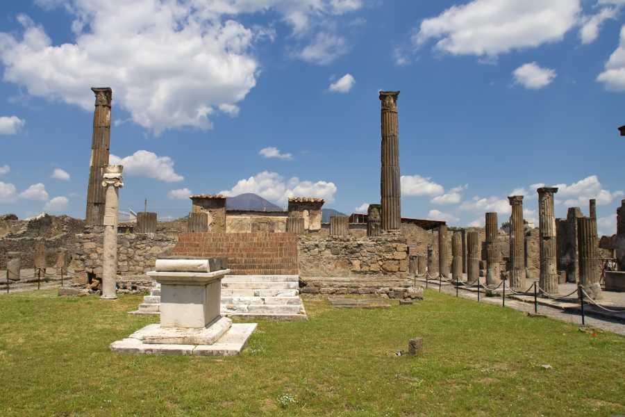 Travel etc Pompeii & Wine Tasting