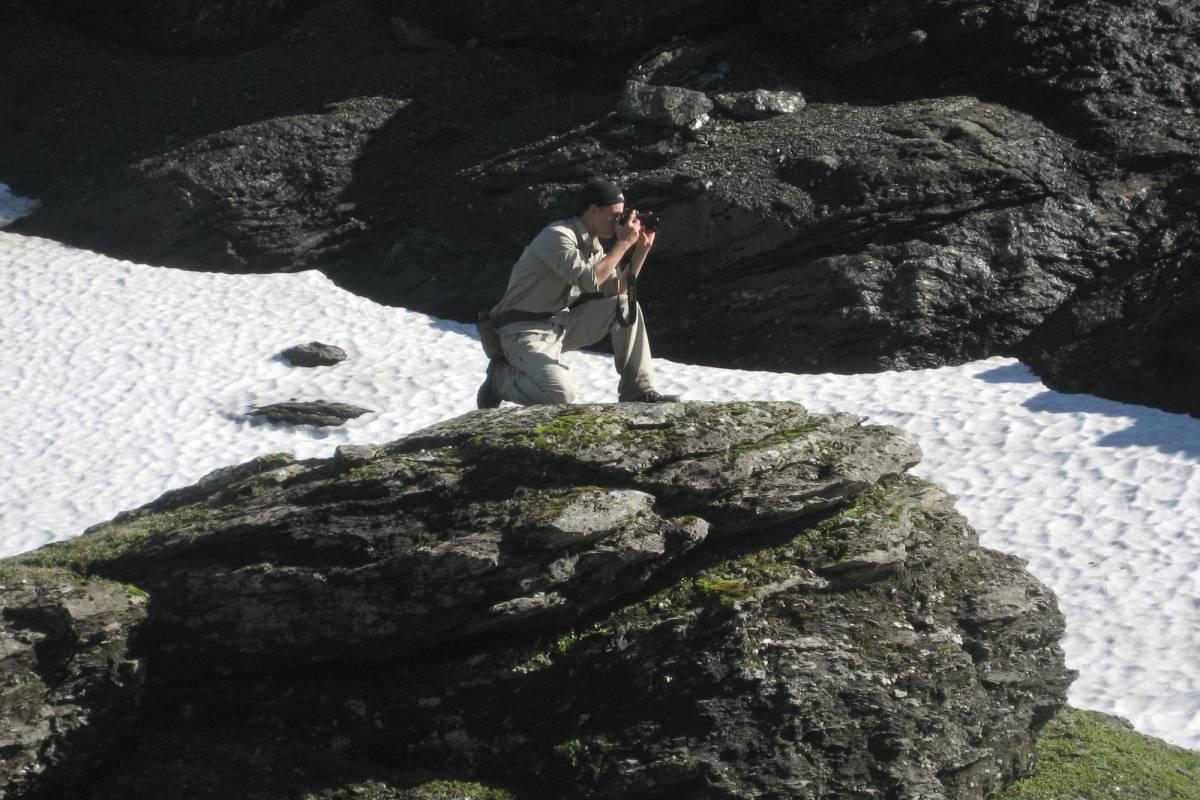 B-Nature A/S PHOTO, ART, MUSIC OR HANDICRAFT