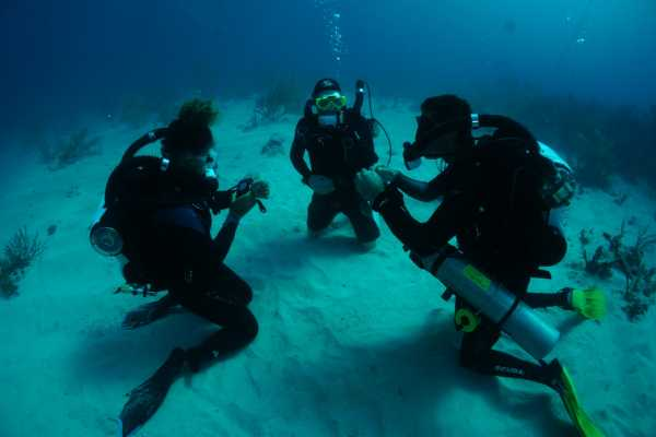 Aquanauts Grenada 7. TDI Explorer CCR Course