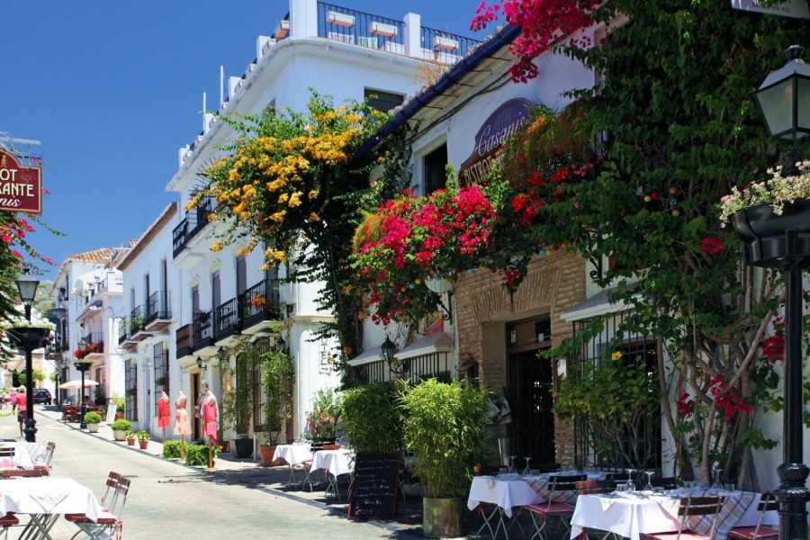 Sights and Bikes Day Tours Marbella and Puerto Banus