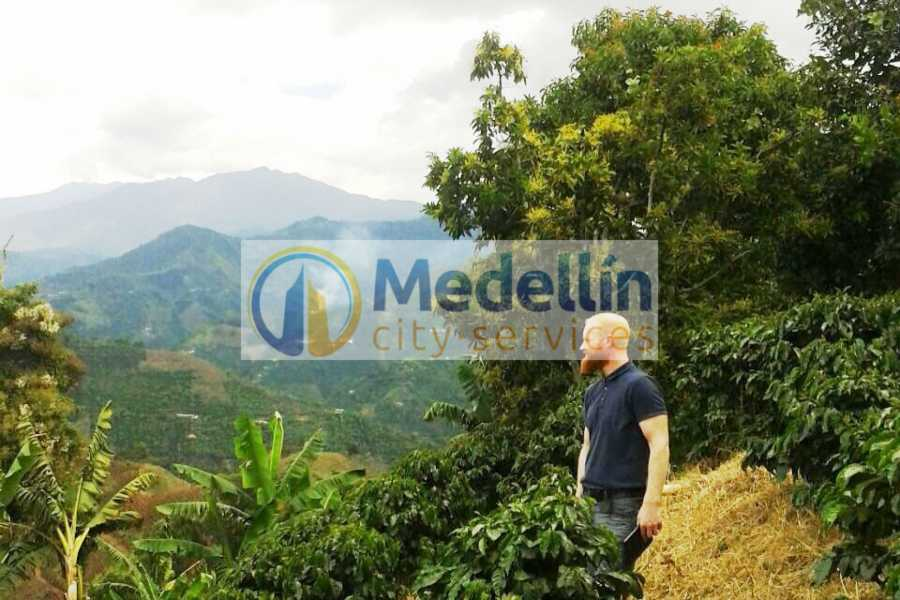 Medellin City Services SUPER SAVER: Medellin City Tour + Jardin Coffee Tour + Food Tour
