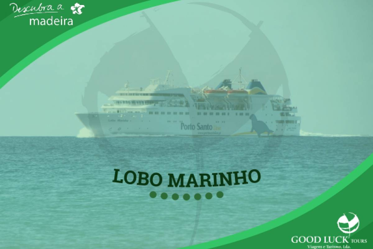 Good Luck Tours Porto Santo (Transferes)