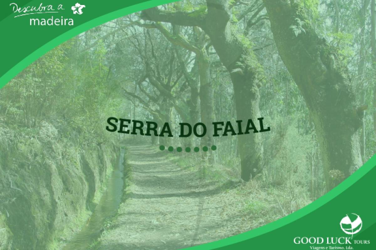 Good Luck Tours Levada da Serra do Faial