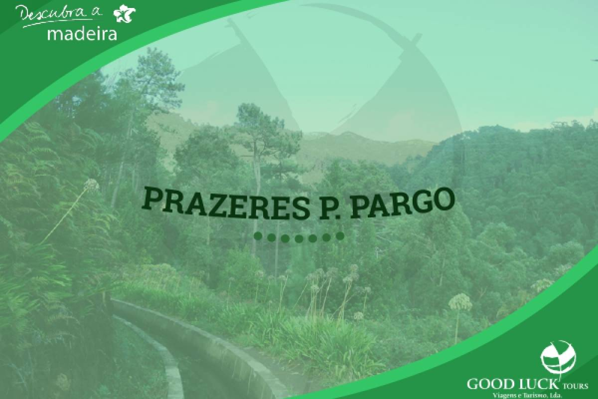 Good Luck Tours Prazeres / P. Pargo