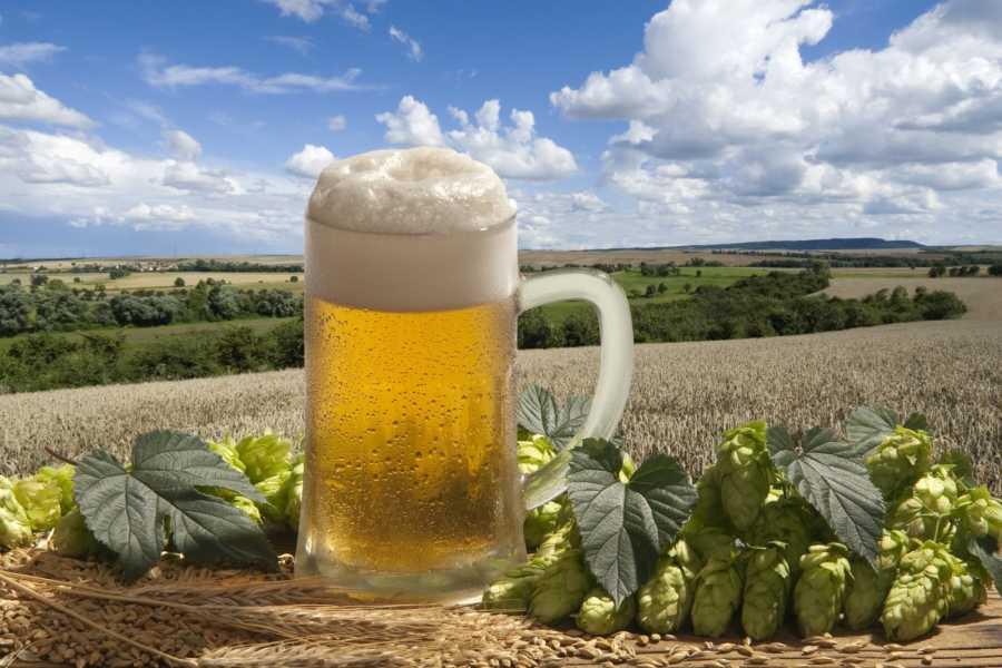 24/7/365 Travel Pilsner Urquell Brewery
