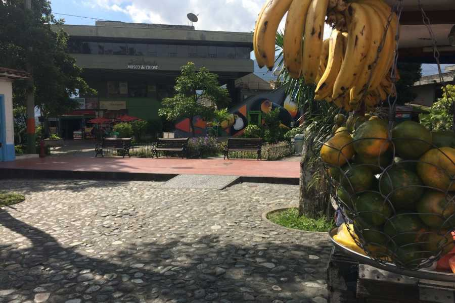 Medellin City Tours BoGo Tour: 	BOOK LOCAL MARKETS TOUR AND GET FREE FOOD TOUR