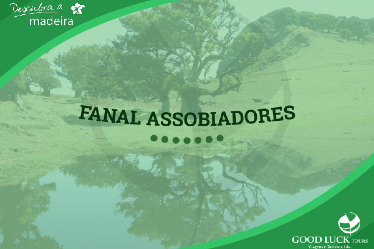 Good Luck Tours Fanal Assobiadores