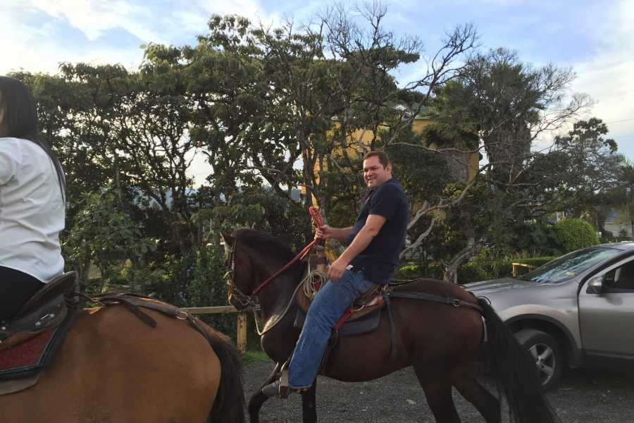 Medellin City Tours SHARED HORSE RIDES