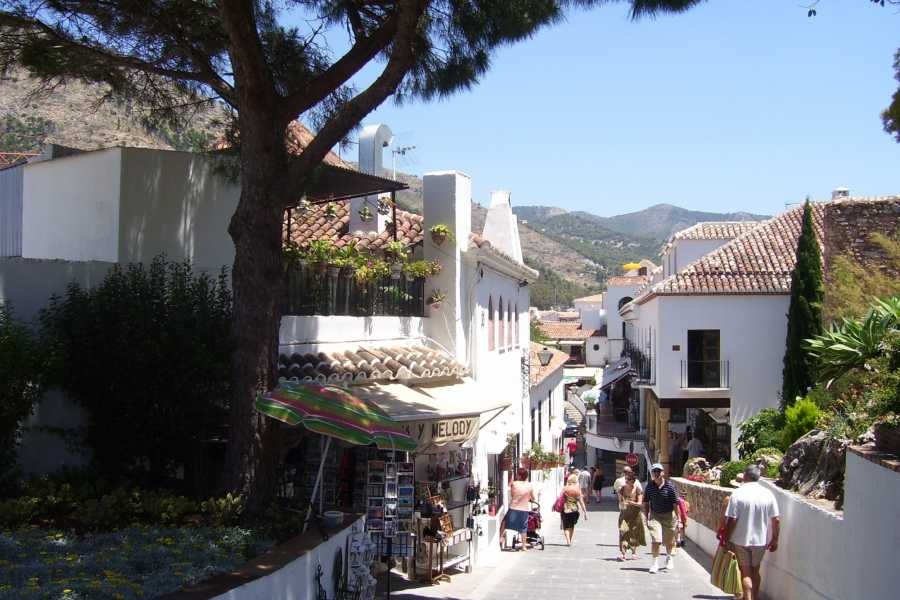 Sights and Bikes Day Tours Malaga and Mijas