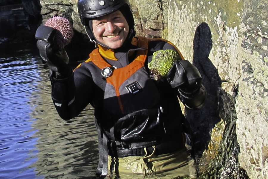 Northern Exposure AS Coasteering ECO