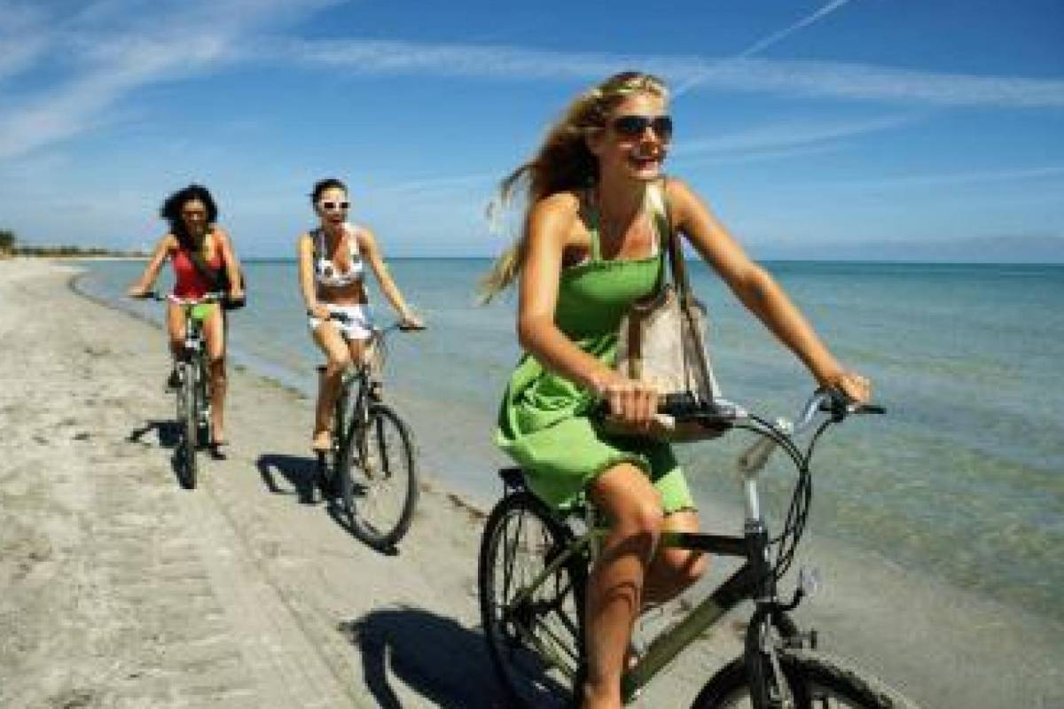 Sights and Bikes Day Tours Welcome to your online bike rental in Malaga.