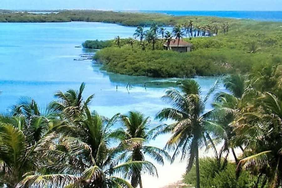 VIAJERO MEXICO Isla Contoy mit Isla Mujeres nettoECOtours®