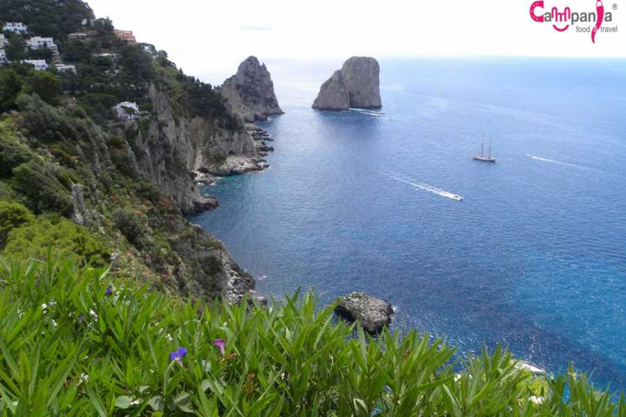 Campania Food & Travel Capri vista dal mare: giro turistico in barca