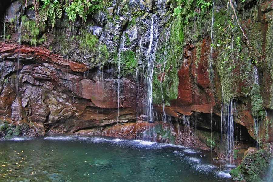 Nature Meetings Rabaçal Lakes & Fountains Walk