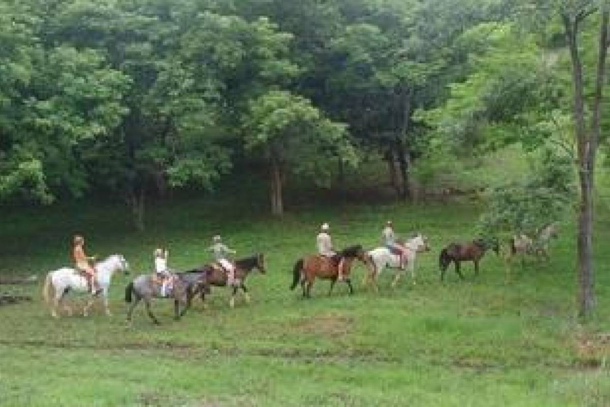 Kelly's Costa Rica Tamarindo Horseback Riding