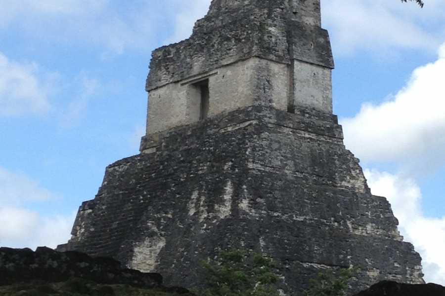 Maya World Tours Tikal One Day Tour Air + Lunch PRIVATE