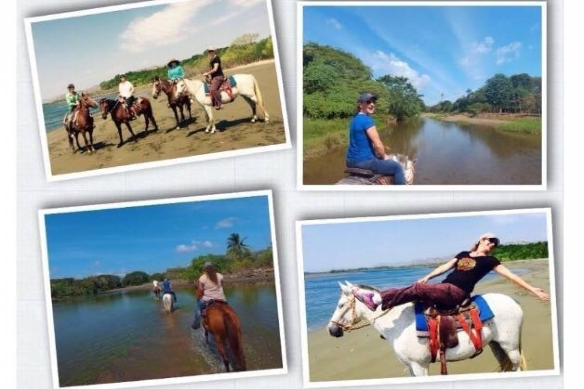 Cacique Cruiser Horse back riding tour
