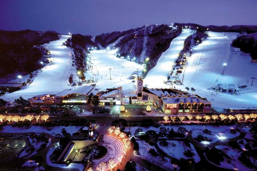 Kim's M & T 2018 Winter Ski Package (5D4N & 4D3N)