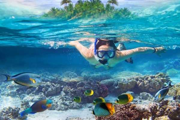 EMO TOURS EGYPT Hurghada Snorkeling Trip at  Sharm El Naga Bay