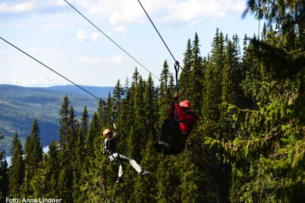 Puls Camp Åre Zipline Black