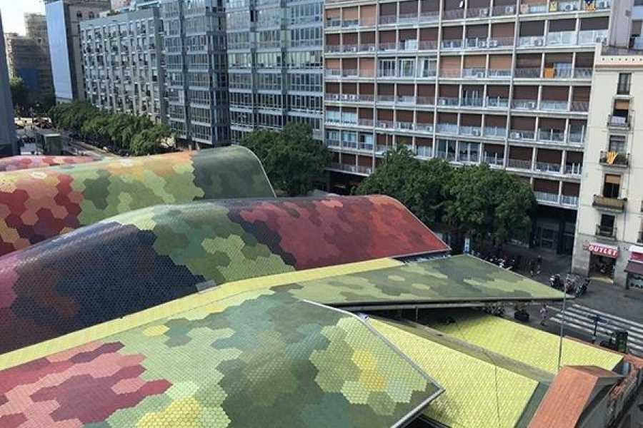BARCELONA ARCHITECTURE WALKS BARCELONA & THE MARKET. Private