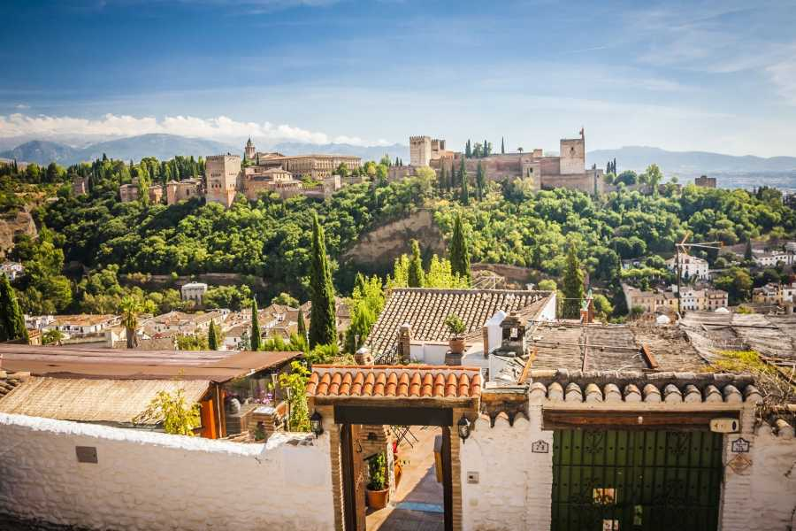 NHUE ALHAMBRA, ALBAICIN AND THEIR NASRID PALACES. PRIVATE TOUR