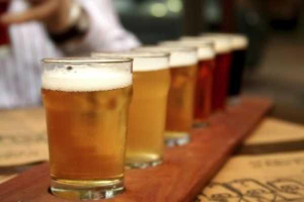 Can You Handle It Tours VZW Degustación de cervezas de Gante