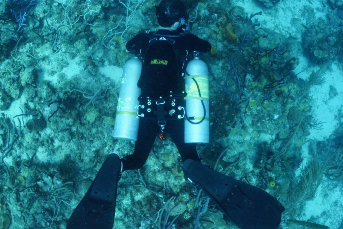 Aquanauts Grenada SDI/TDI Sidemount Diver