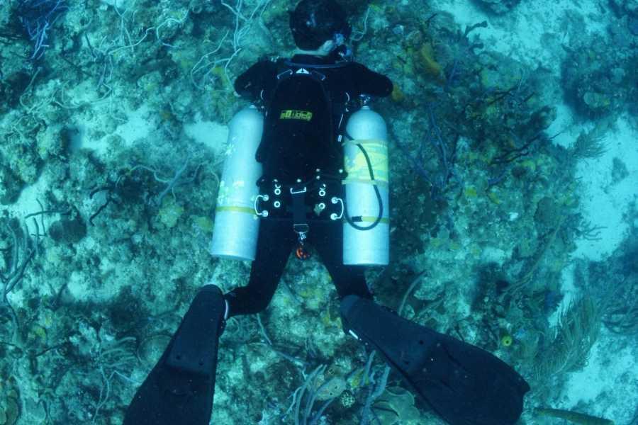 Aquanauts Grenada SDI or PADI Sidemount Diver