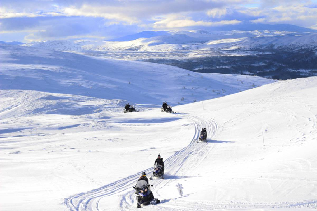 Camp Åre Snowmobile safari 2h