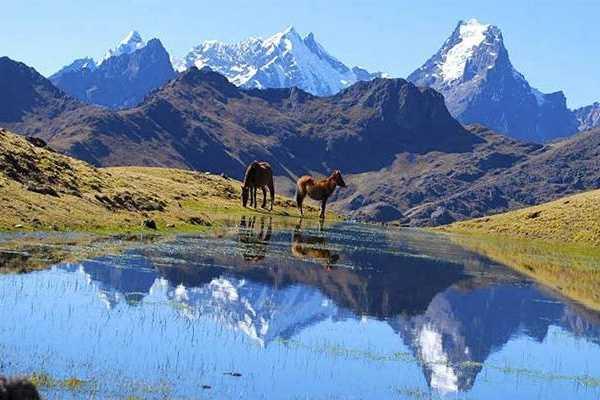 Conde Travel Montaña de 7 Colores - Vinicunca 1D