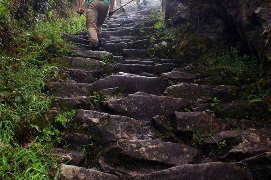 Conde Travel Tour a Machu Picchu en Bus