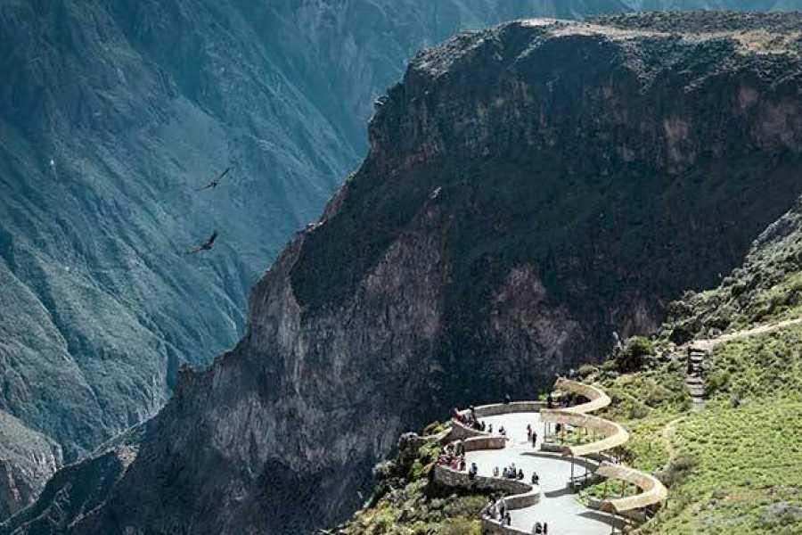 Conde Travel Cañon del Colca Dia Completo