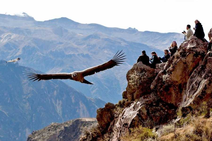 Conde Travel Colca Canyon 2D/1N