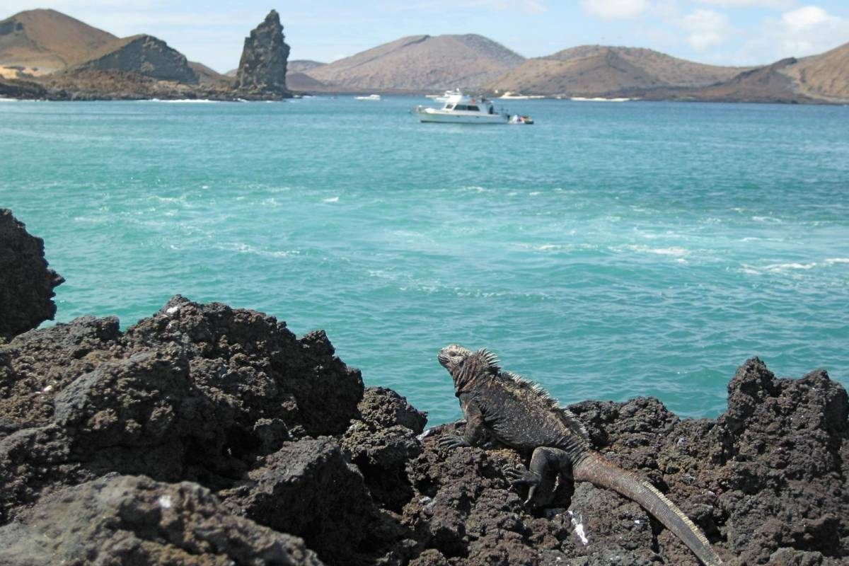 Gray Line Ecuador Full Day Yacht Tour with Lunch