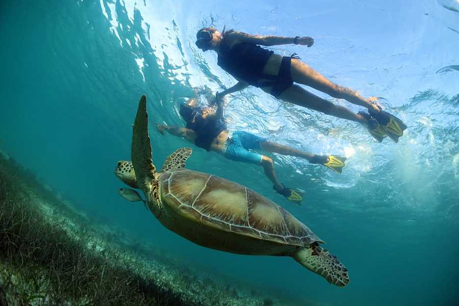 Cancun Vacation Experts UNDERWATER WORLD