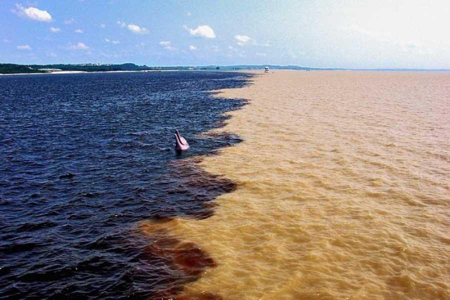 Check Point Encontro das Águas em Manaus