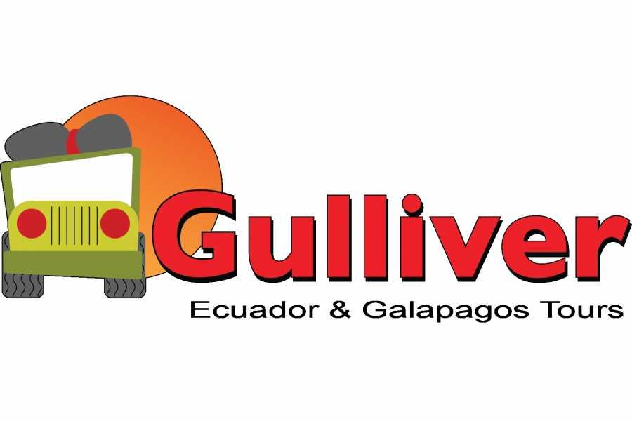 gulliver.com.ec General Payment