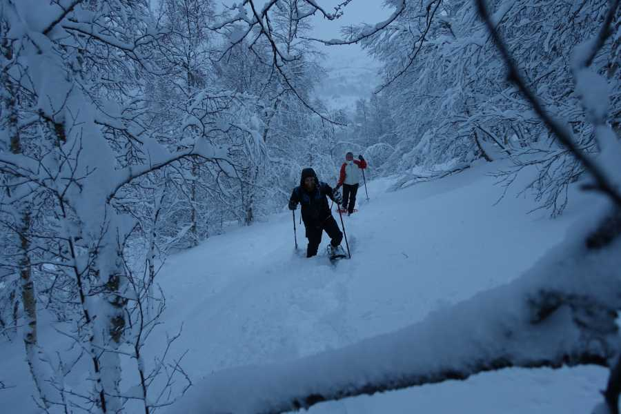 Uteguiden AS Snowshoe hike