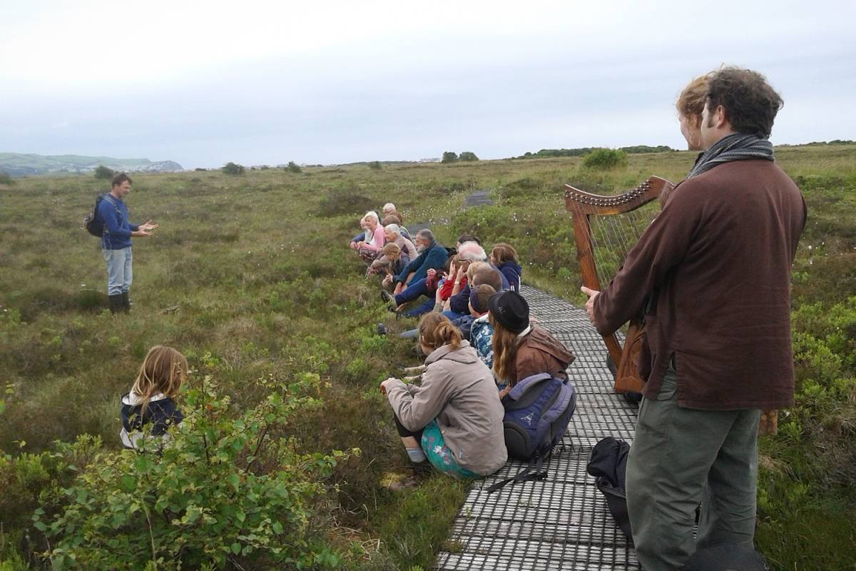 Cambria Tours The Old Toad of Borth Bog – Fairytales and Science