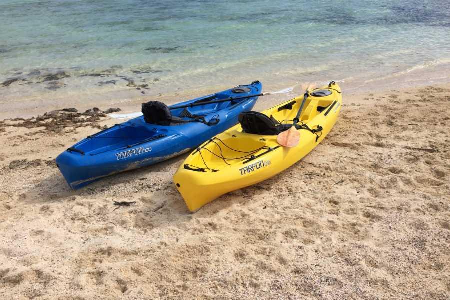 tinyshurricanehole Kayak Rental: Hourly: Tiny's Hurricane Hole