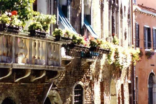 Venice Tours srl SECRET GARDENS OF VENICE