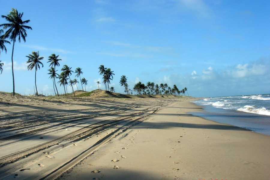 Check Point litoral norte - Muriú