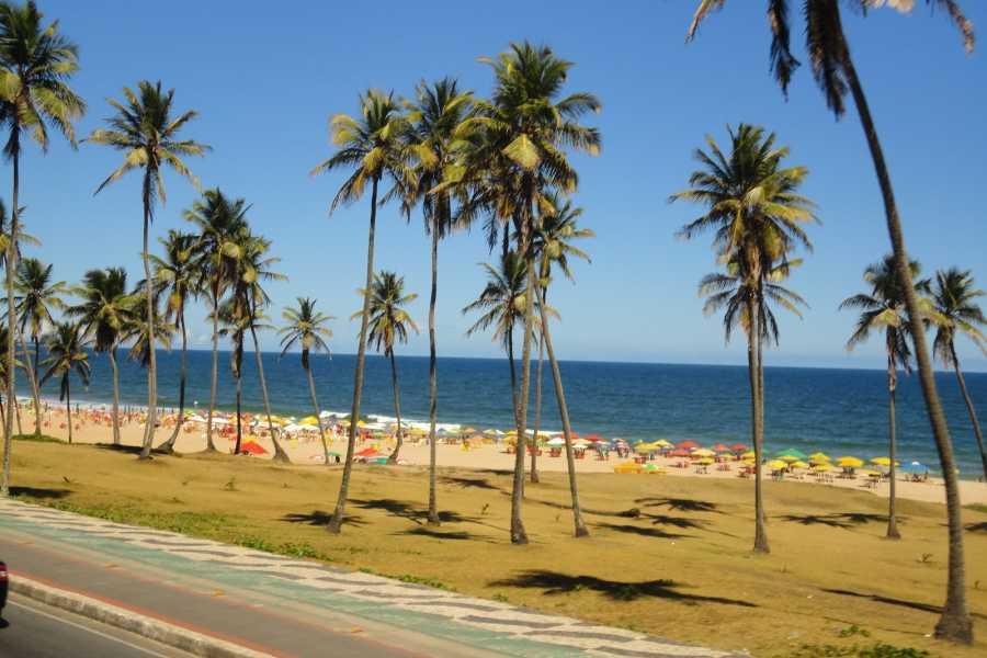 Check Point Praia Armação