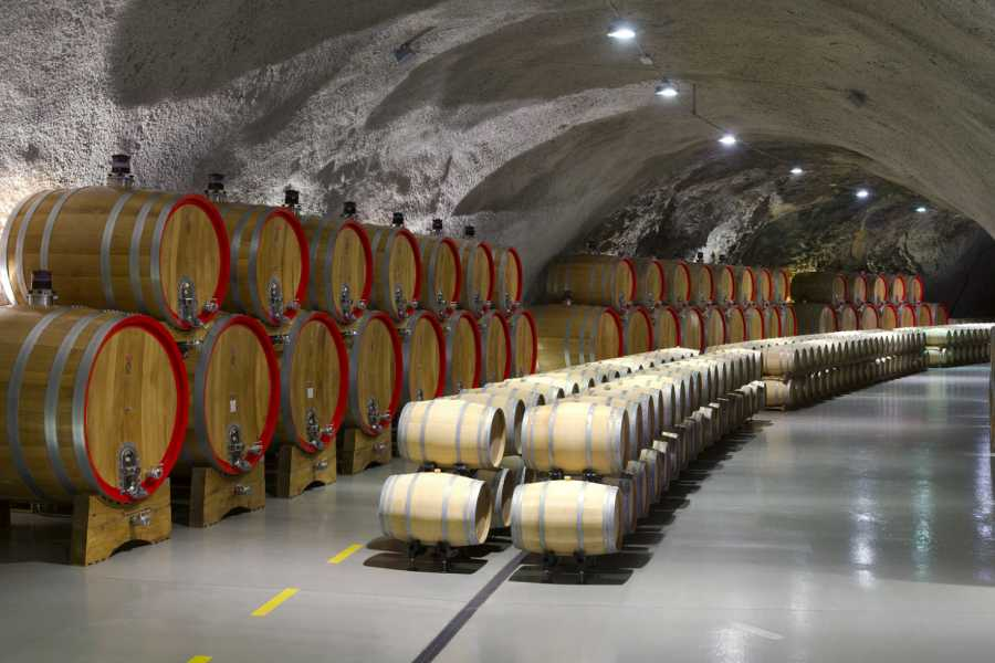 MH Travel Agency PODGORICA WINE AND HISTORY TOUR
