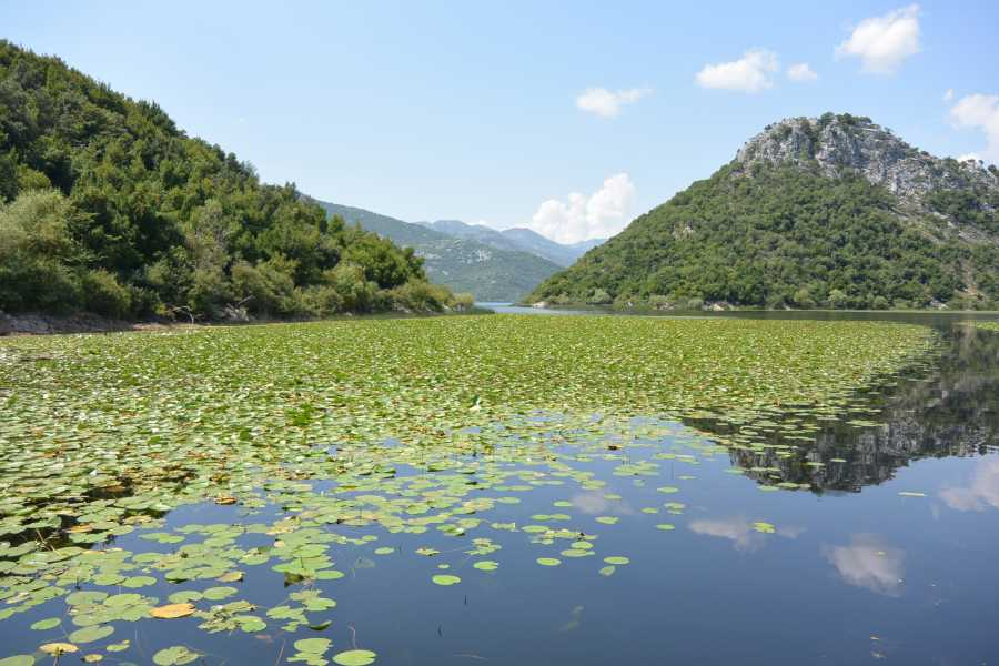 Nature Trips Montenegro Excursion - Skadar Lake - Cruising trip