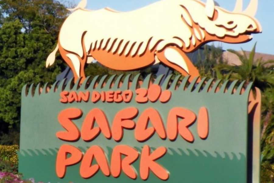 Dream Vacation Builders Round Trip Transfer to San Diego Zoo Safari Park Tour #4C