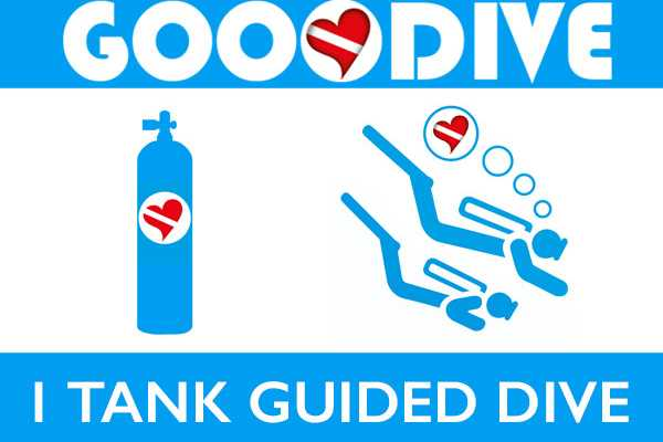 1 Guided Dive